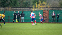 Dorking Wanderers FC v Three Bridges FC 26 November 2016